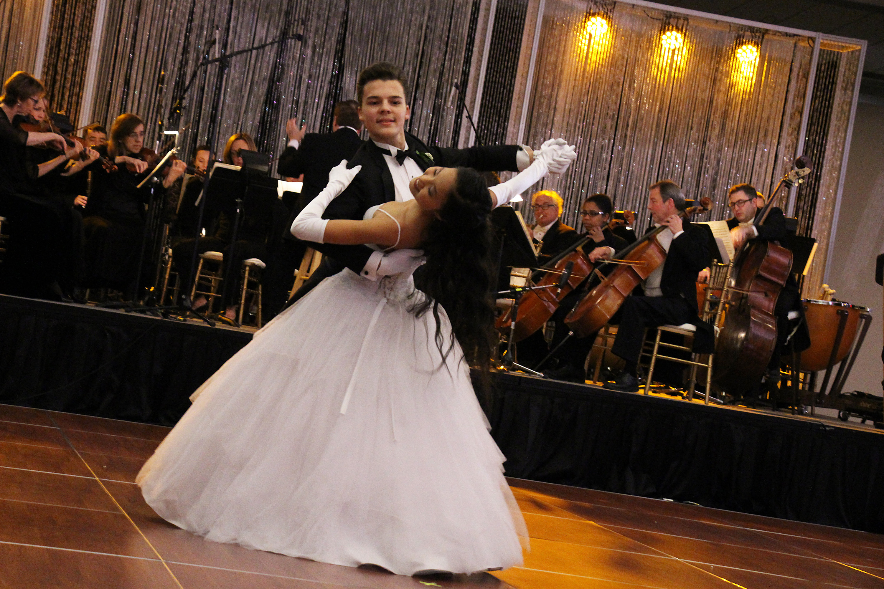 Viennese Winter Ball