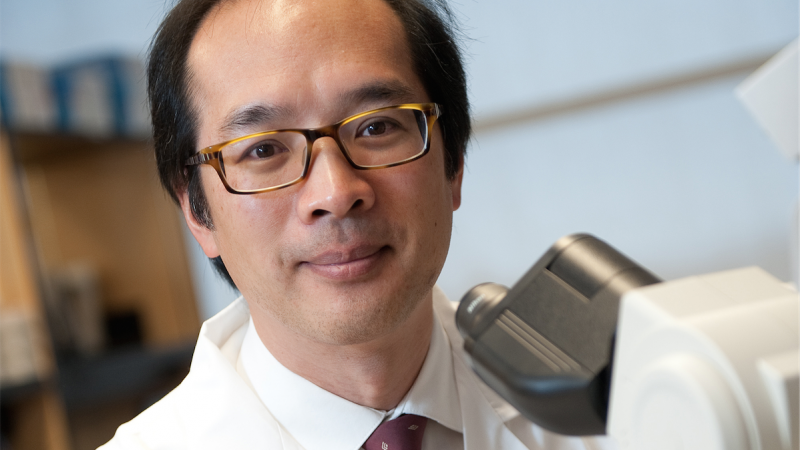 Dr. Bryan Lo, Lead Scientist and Medical Director, Molecular Oncology Diagnostics Laboratory.