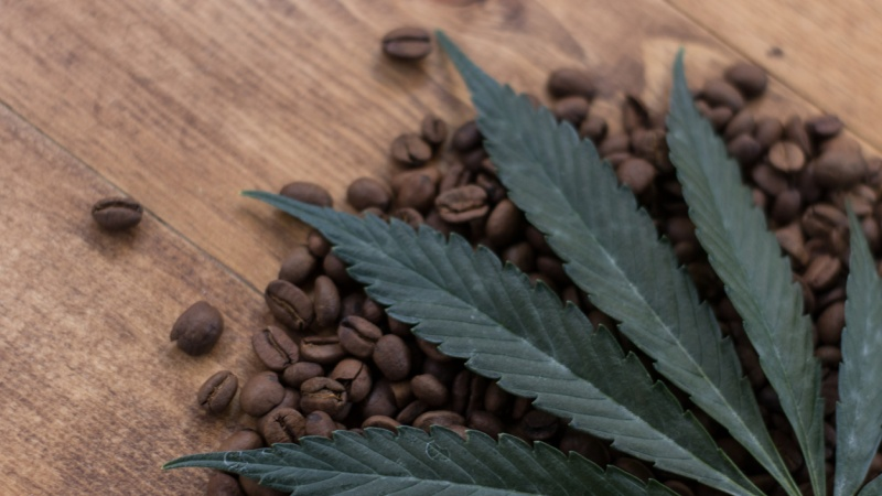Second Cup plans to convert some coffee shops into pot dispensaries