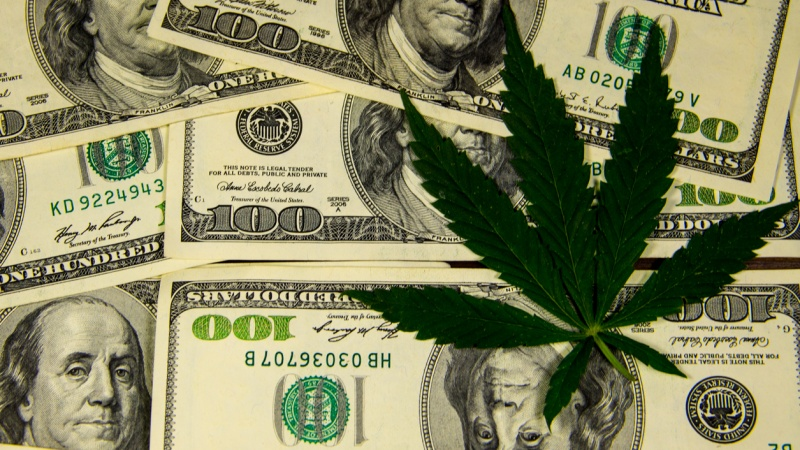 Canopy applies to become first pot producer listed on NYSE