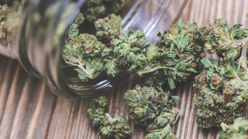 A closeup shot shows dried cannabis spilling out of a jar onto a tabletop